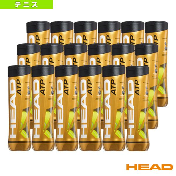 HEAD ATP/ヘッドATP『箱単位(18缶/72球)』(570674)